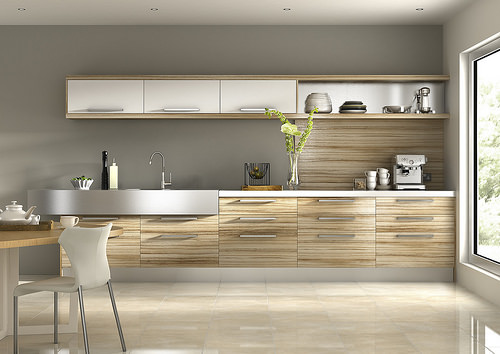Kitchen Cabinet, Countertop and Sinks for an Ultramodern Kitchen