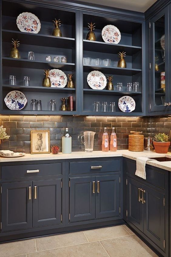 Best Kitchen Cabinets Buying Guide PHOTOS - Best blue for kitchen cabinets